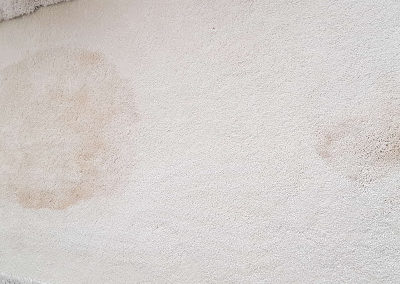 Tea stain in Theale - before